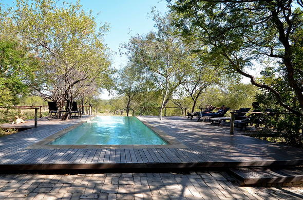 Toro Yaka Bush Lodge has a swimming pool.